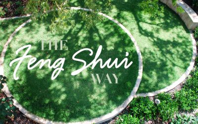 The Feng Shui Way